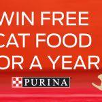 purina-cat-food-contest