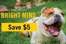 proplan-bright-mind