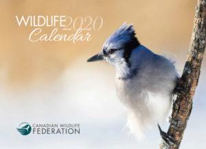 Canadian wildlife federation calendar